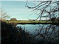 SK5149 : Pond near Whyburn House Farm by Antony Dixon