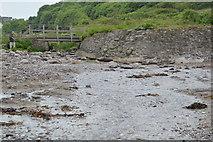 SX5148 : Stream on the beach, Wembury by N Chadwick