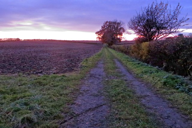 Farm track towards the sunset
