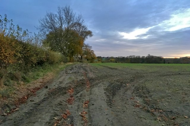 Farm track going towards The Spinney