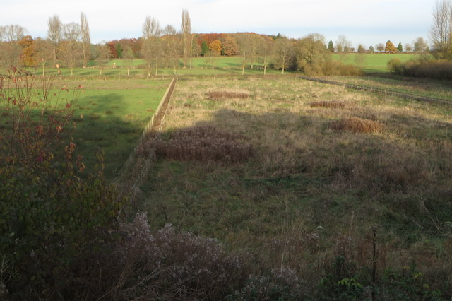 Paddocks sloping down to The Great Ouse