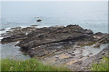 SX5148 : Rocky shoreline by N Chadwick