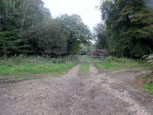 Gate and wood stack