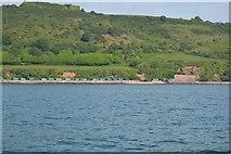 SX4450 : Coastline near Sandway Point by N Chadwick