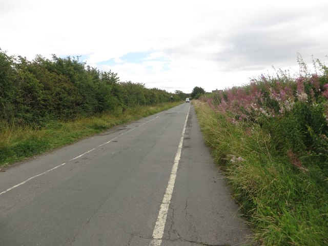 Country lane west of Dinnington