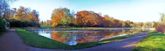 Cow Pond, Windsor Great Park