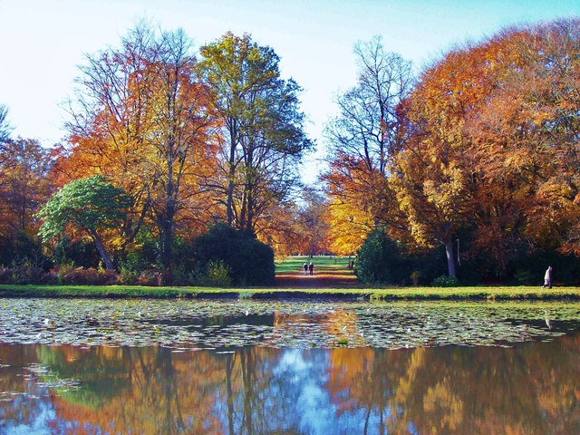 Autumn on Cow Pond, Windsor Great Park