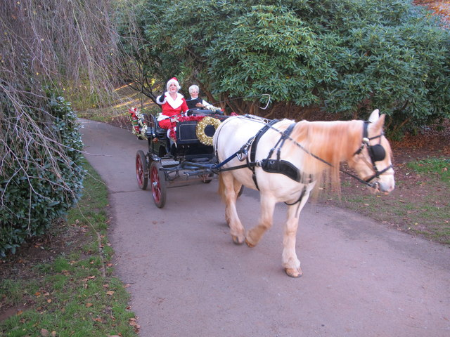 Horse-drawn carriage for Santa Claus, Cockington