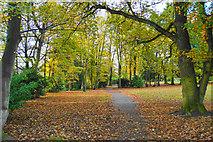 SJ7886 : Path in Halecroft Park by Bill Boaden