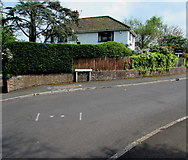 ST3049 : Westfield Drive fence and hedge, Burnham-on-Sea by Jaggery