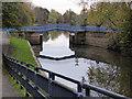 SE6051 : Blue Bridge - York by Chris Allen