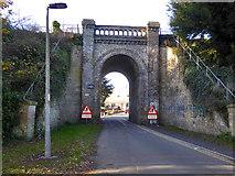 TM1542 : Railway bridge LTN1/243, Ipswich by Robin Webster