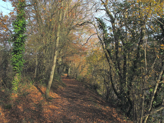 Autumn on path by River Dart in Totnes
