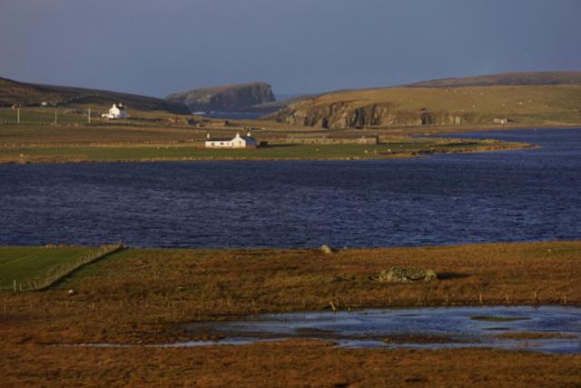 Setter Marsh, Loch of Spiggie