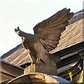 SJ8398 : Eagle Insurance Buildings: Architectural detail (2) by Gerald England