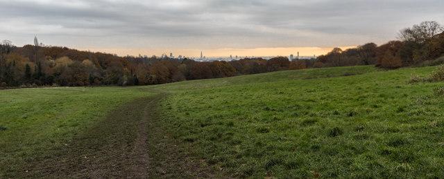 London Skyline from near Kenwood, Hampstead Heath