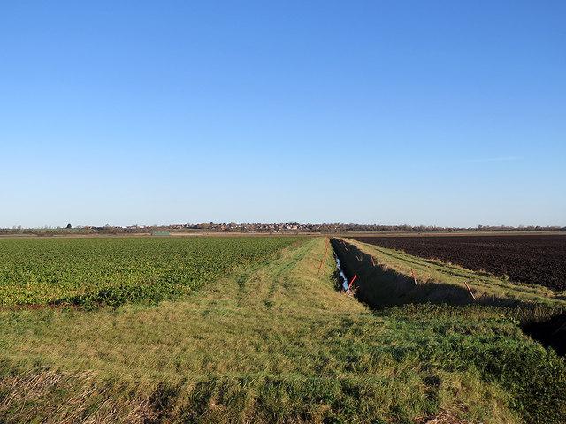 Across West Fen in November
