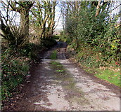 SS9086 : Public footpath in the south of Bettws by Jaggery