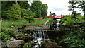 SJ8673 : Henbury Hall Gardens near Macclesfield - Waterfall & ornamental bridge by Colin Park