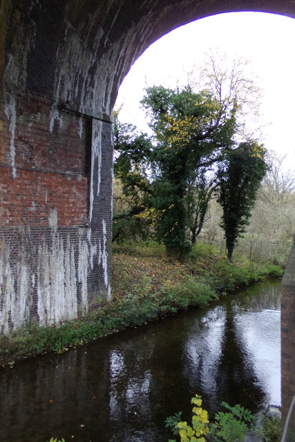 River Lea at Chiltern Green Viaduct
