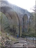 SK1373 : Abseiling on former railway bridge by Dave Dunford