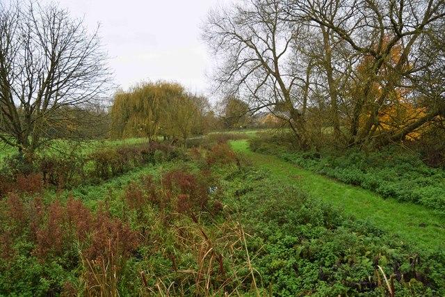 Cuttle Brook, Thame, Oxon