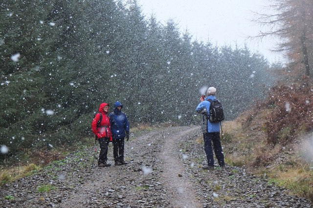 Snow shower on Whitfold Hill