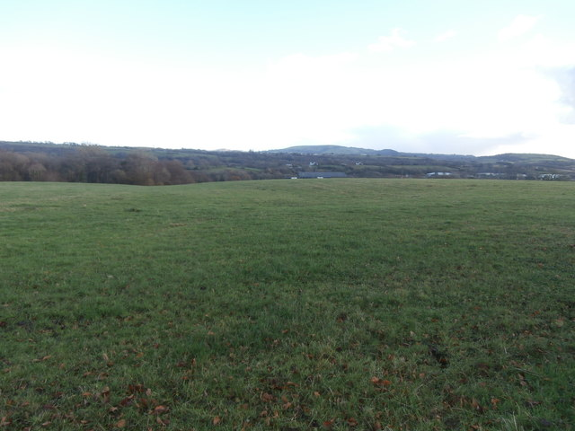Pasture near Rhiwfelin Fach Farm