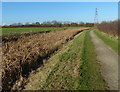 SK6830 : Towpath along the disused Grantham Canal by Mat Fascione