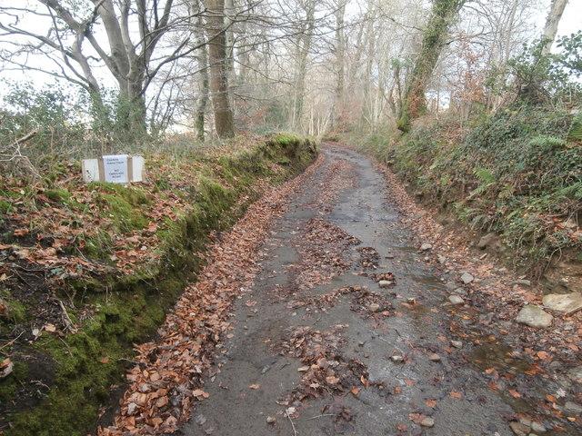 Track to Castellau-ganol Farm