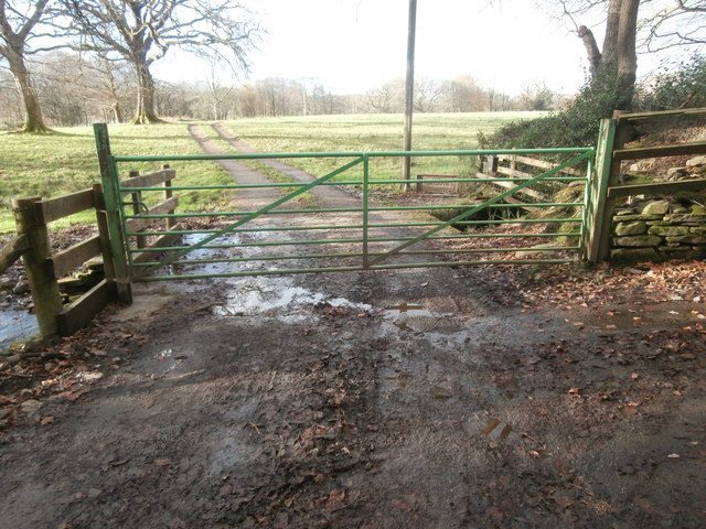 Gate to the track to Ty'n-y-llwyn Farm
