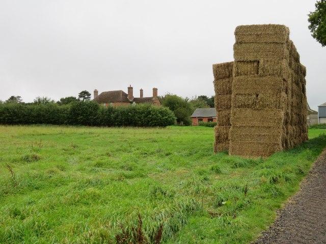 Harvest time at Breach Farm by Sandy B