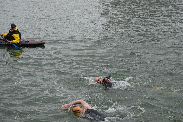 Openwater swimmer, Victoria Dock