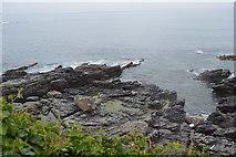 SX4948 : Coastline, Heybrook Bay by N Chadwick
