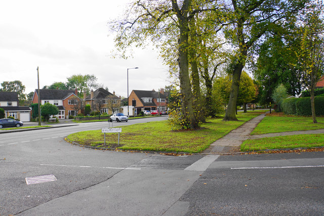 Wide green verge at the bottom of Wilmott Road