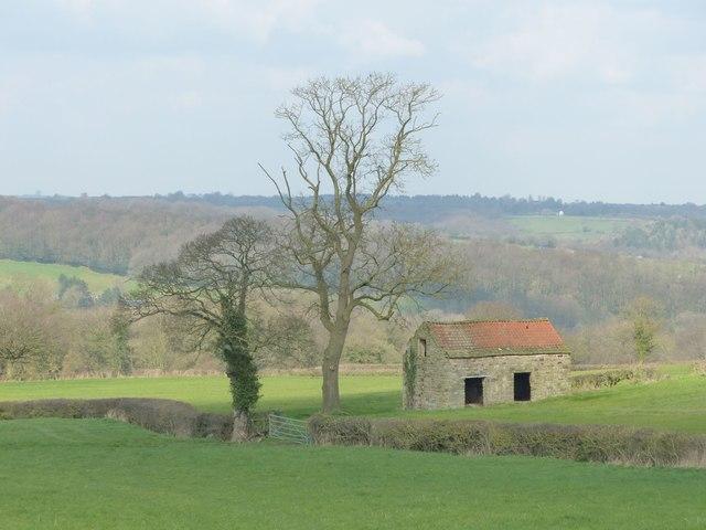 Barn near Wilday Green