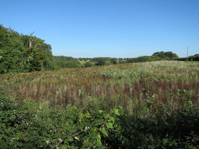 Fallow field by B1108
