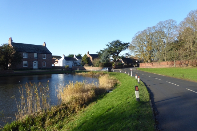 Road and Duck Pond