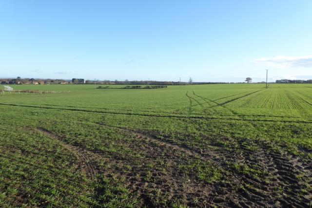 Farmland off Wetherby Road
