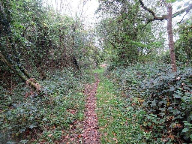 Route of Monarch's Way through Selhurst Park