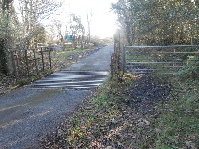 Cattle grid at boundary of Llantrisant Common