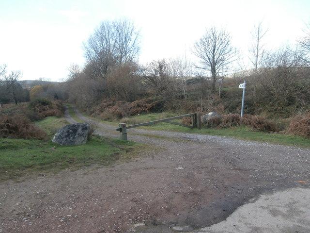 Track on Llantrisant Common
