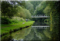 SO8274 : Canal south of Kidderminster in Worcestershire by Roger  Kidd