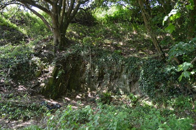 Small rock outcrop