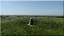 SU6022 : Trig point on Beacon Hill near Exton by Colin Park
