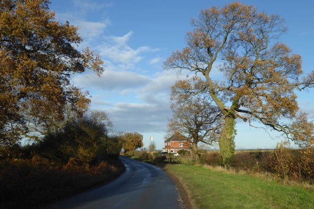 Rudgate near Wharton Lodge