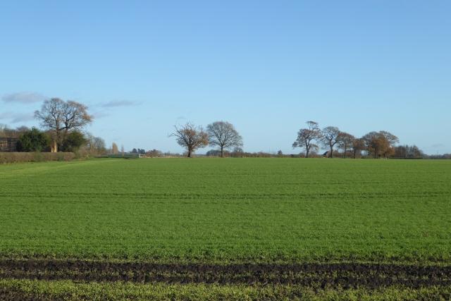 Farmland near Bickerton Spring
