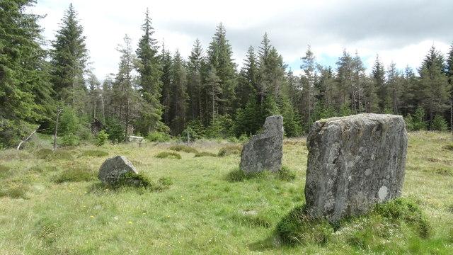 Clachan an Diridh, Fonab Forest above Pitlochry