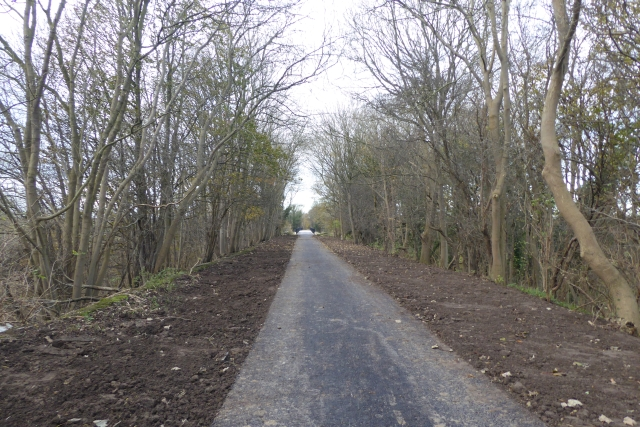 Path towards the bridge