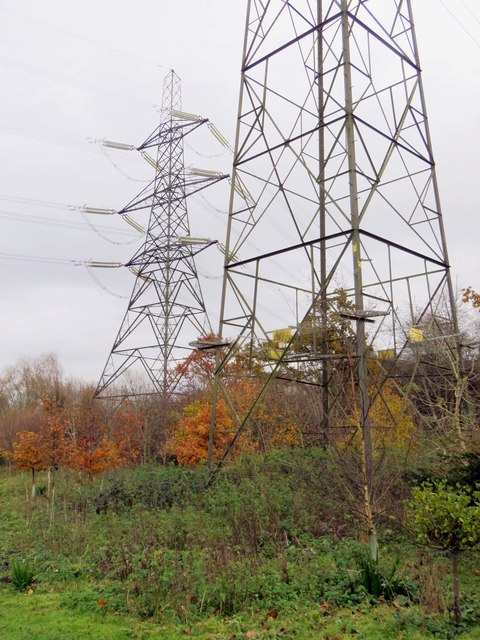 Electricity pylons in Kendal Copse